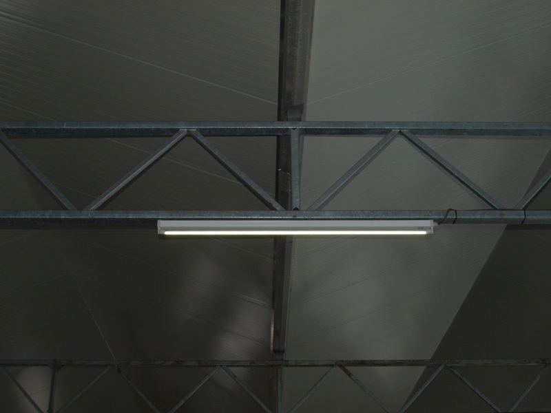 LED lights in a industrial hall